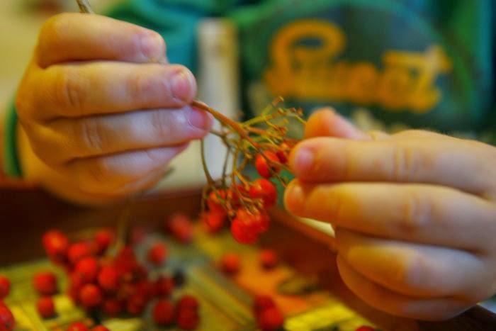 korale z jarzębiny, piosenka o jesieni dla dzieci