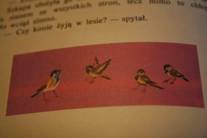 ilustracje dla dzieci, przygody z ksiązką, ksążki dla dzieci, nie przeproszę, ilustracje bracia Traugutowie