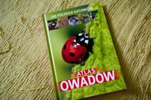 Przygoda z książką – Atlas owadów
