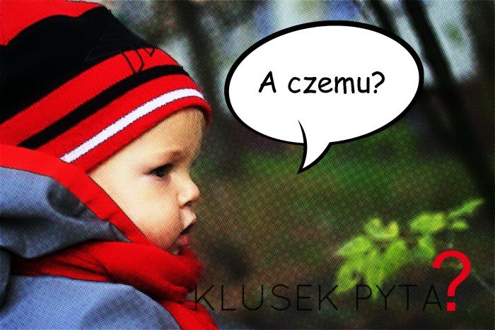 klusek_pyta