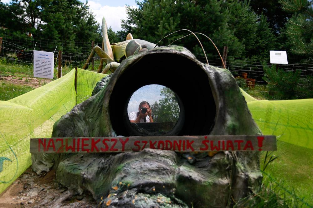 kolejka wąskotorowa, mierzeja wiślana, nad bałtykiem z dzieckiem, bałtyk, wakacje z dzieckiem, atrakcje turystyczne mierzeja wiślana, park owadów jantar