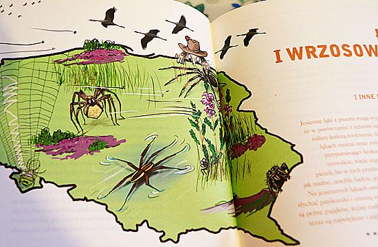 przewodnik prawdziwych tropicieli jesien, książki o jesieni dla dzieci