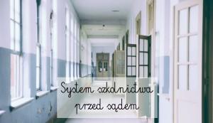 System szkolnictwa przed sądem
