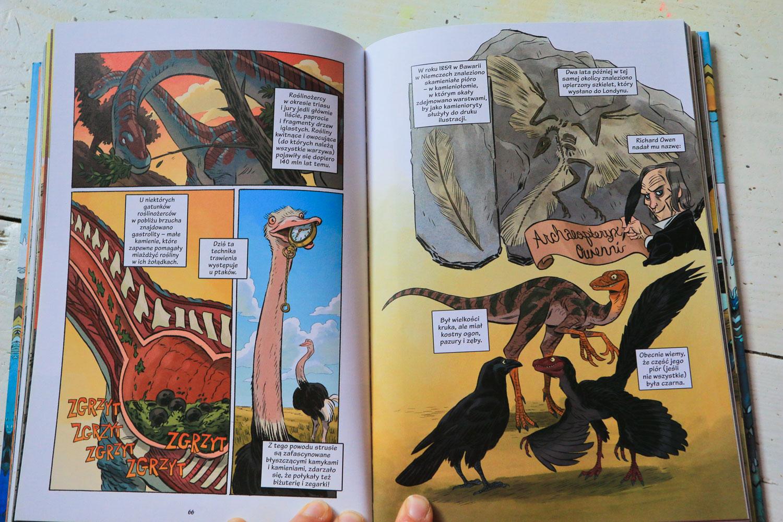 dniozaury skamieliny i pióra, książki o dinozaurach, książki o dinozaurach dla dzieci, dinozaury dla dzieci