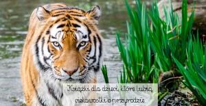 Książki dla dzieci, które lubią ciekawostki o przyrodzie