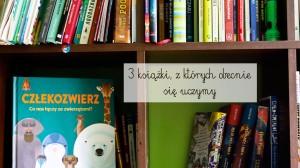 3 książki, z których obecnie się uczymy