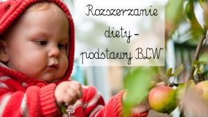 rozszerzanie diety, blw