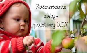 Rozszerzanie diety – podstawy BLW